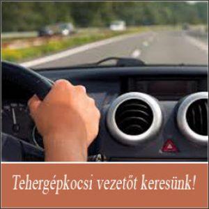 Tehergépkocsi vezető – Budaörs