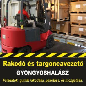 Jobvip_targonca_allas